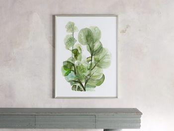 Translucent Leaves Framed Print 2