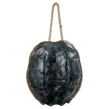 Turtle Shell Accessory (Natural)